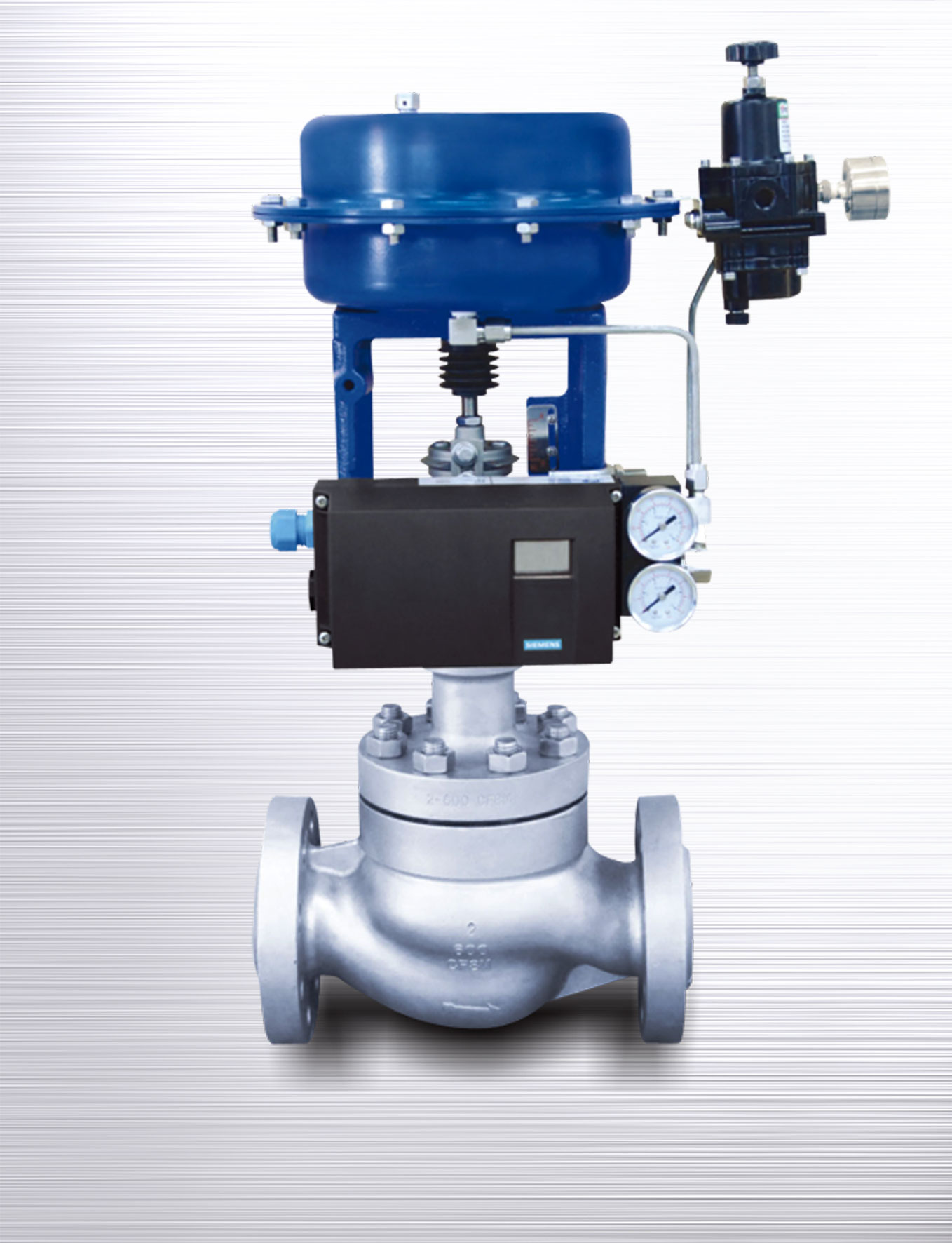Single Seated Control Valves
